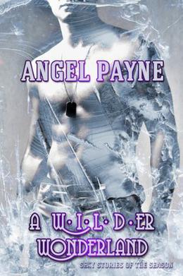 A WILDer Wonderland - Sexy Stories Of The Season by Angel Payne