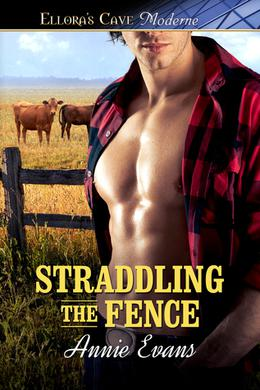 Straddling the Fence (Clay Hearts) by Annie Evans