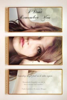 I Don't Remember You by Stephanie Lennox