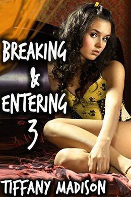 Breaking and Entering 3 by Tiffany Madison