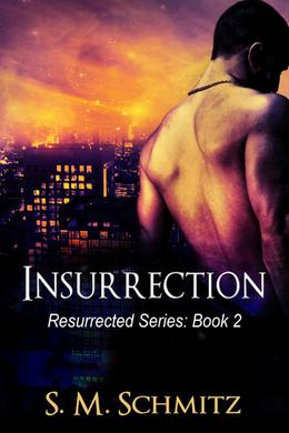 Insurrection by S.M. Schmitz