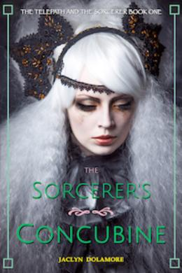 The Sorcerer's Concubine by Jaclyn Dolamore