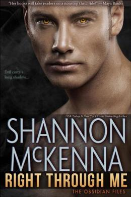 Right Through Me by Shannon McKenna