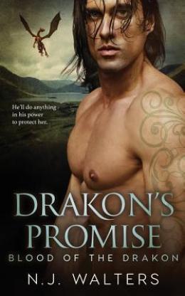 Drakon's Promise by N J Walters