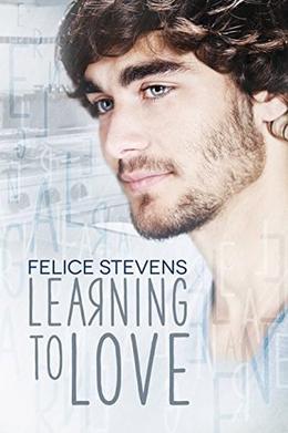 Learning to Love by Felice Stevens