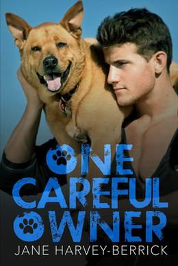 One Careful Owner by Jane Harvey-Berrick