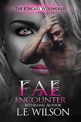 Fae Encounter by L.E. Wilson