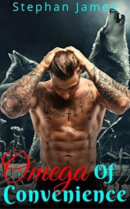 Omega Of Convenience: Straight To Gay First Time Mpreg Romance by Stephan James