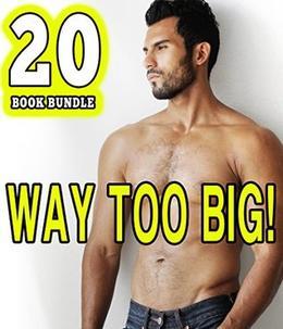 Way Too Big! 20 Gay Book Bundle of Everything Off Limits by Jennifer Wonder