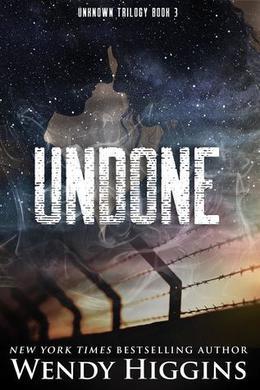 Undone by Wendy Higgins