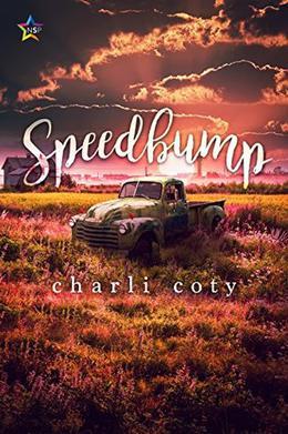 Speedbump by Charli Coty