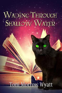Wading Through Shallow Water by Toni Morrow Wyatt