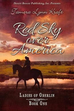 Red Sky over America by Tamera Lynn Kraft