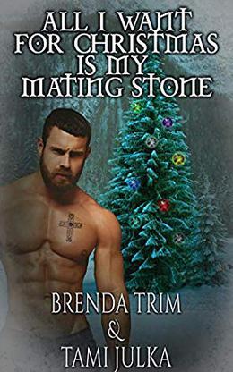 All I Want for Christmas is my Mating Stone: Dark Warrior Alliance Novella, Book 20.5 by Brenda Trim, Tami Julka