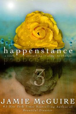 Happenstance 3 by Jamie McGuire