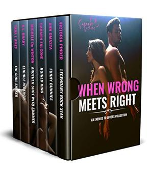 When Wrong Meets Right: An Enemies to Lovers Collection by Victoria Pinder, Ann Omasta, Carmen Falcone, Michele de Winton, K.L. Brady, Tara L. Ames