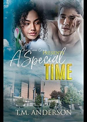 A Special Time by T.M. Anderson