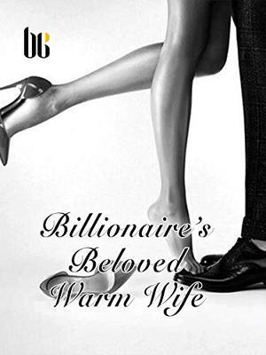 Billionaire's Beloved Warm Wife: Volume 5 by Xue ChenMeng, Lemon Novel