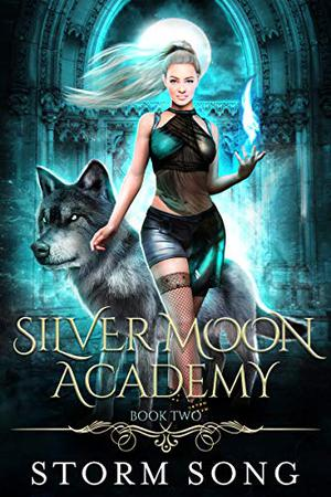 Silver Moon Academy: Book Two: A Reverse Harem Academy by Storm Song
