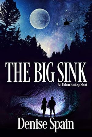The Big Sink by Denise Spain