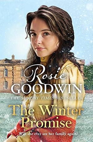 The Winter Promise  (Precious Stones) by Rosie Goodwin