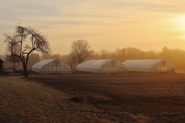 Cold Frame Farm