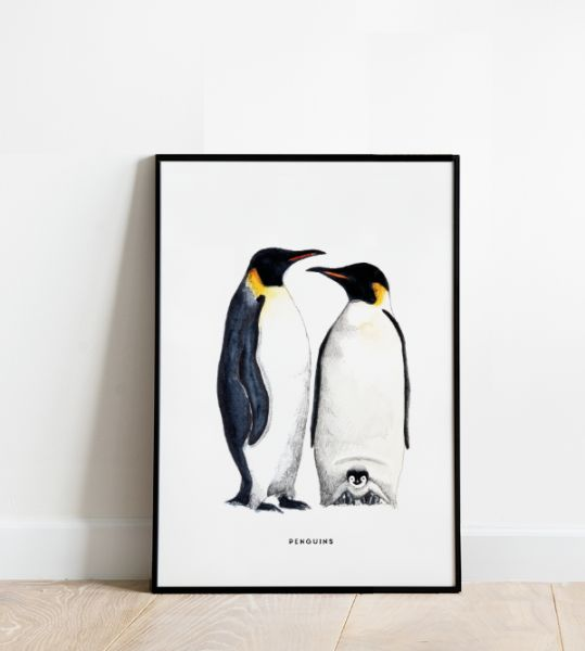Poster 30 x 40 / Pinguins