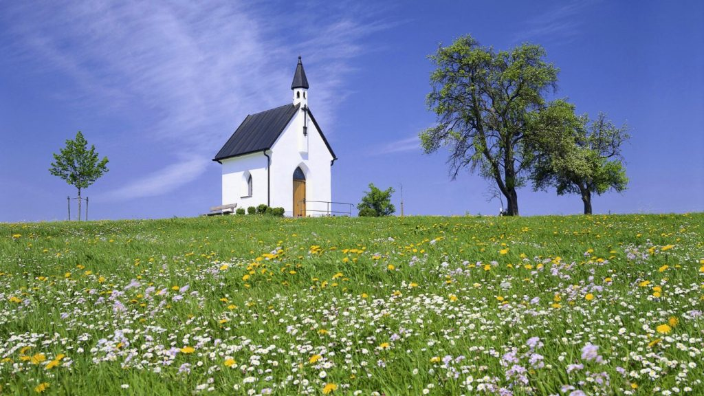 Youth Ministry and the Church: Youth Pastors in Small Churches