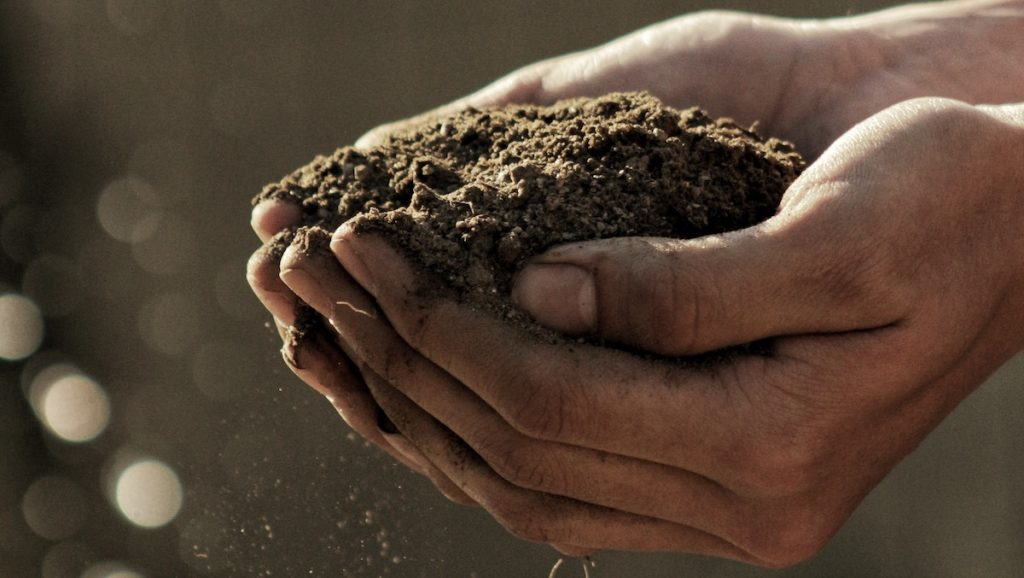 Seeing Students in the Parable of the Soils