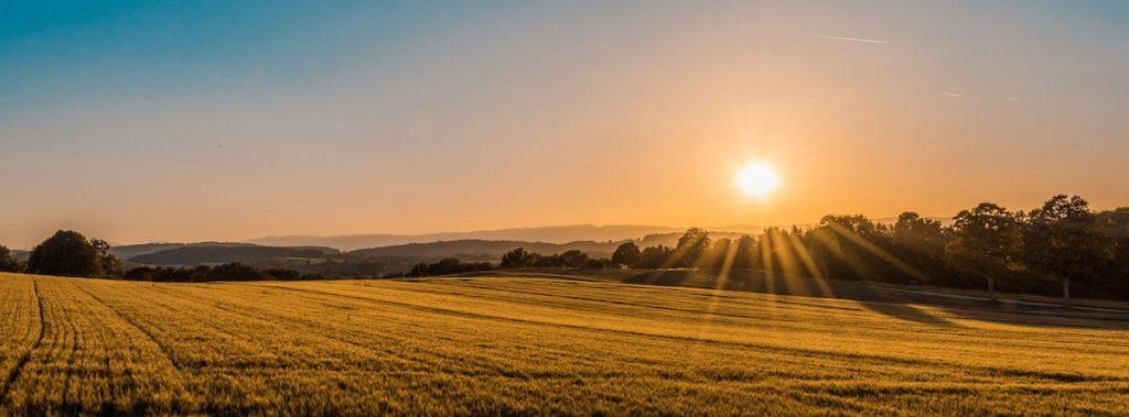New Morning Mercies: Paul David Tripp on God's Great Faithfulness