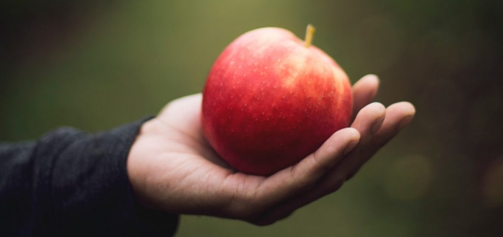 Ask Alice: Fostering Healthy Relationships With Food In Our Children- An Interview with Suzanne Pirkle