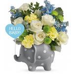 6244 - Hello Baby Santa Maria CA delivery.