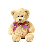 996828 - Sitting Plush Bear Santa Maria CA delivery.