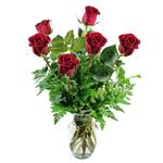 91025 - Six Premium Roses Santa Maria CA delivery.