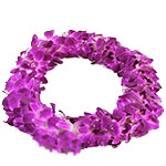 1068 - Double Orchid Lei - Off Season Santa Maria CA delivery.
