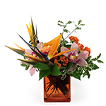 2165 - Cymbidium and Birds of Paradise Santa Maria CA delivery.