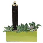 2216 - Jade Garden in Green Santa Maria CA delivery.