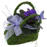 2240 - Violet Garden Santa Maria CA delivery.