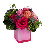 2538 - Rosana in Rose Cube Santa Maria CA delivery.