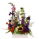 2731 - Carmel Garden Bouquet Santa Maria CA delivery.
