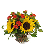 2780 - Layla Sunflower Bouquet Santa Maria CA delivery.