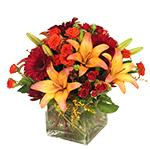 2821 - Alexis Autumn Bouquet Santa Maria CA delivery.