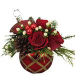2855 - Rudolph Ornament Santa Maria CA delivery.