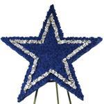 2909 - Dallas Cowboys Star Santa Maria CA delivery.