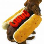 Chien-hot-dog