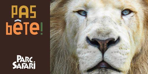 Le Parc Safari ouvre ses portes le 21 mai!