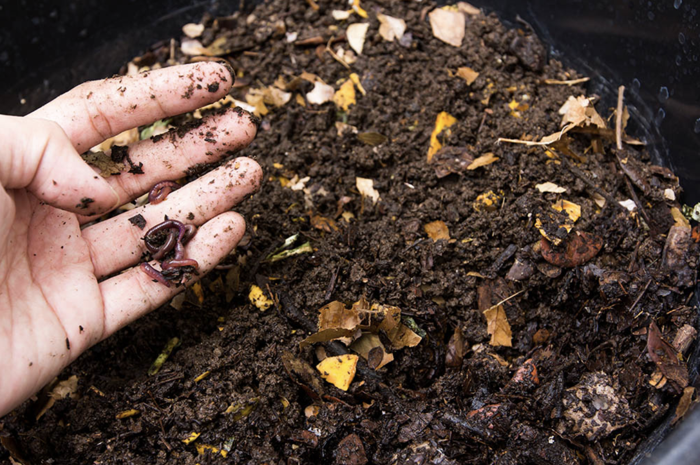 compost-unpointcinq