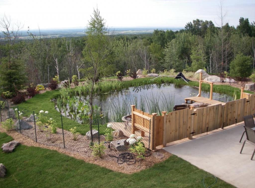 piscine-naturelle-aquaplantes-unpointcinq