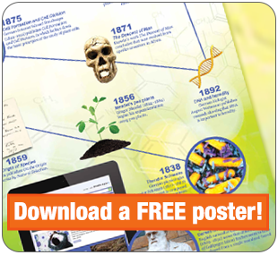 Download a Free Poster