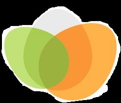 RoverEye Logo